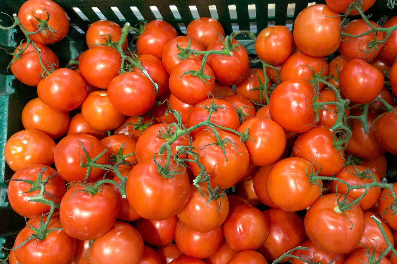 Палестинская контрабанда: 7 кг золота в помидорах