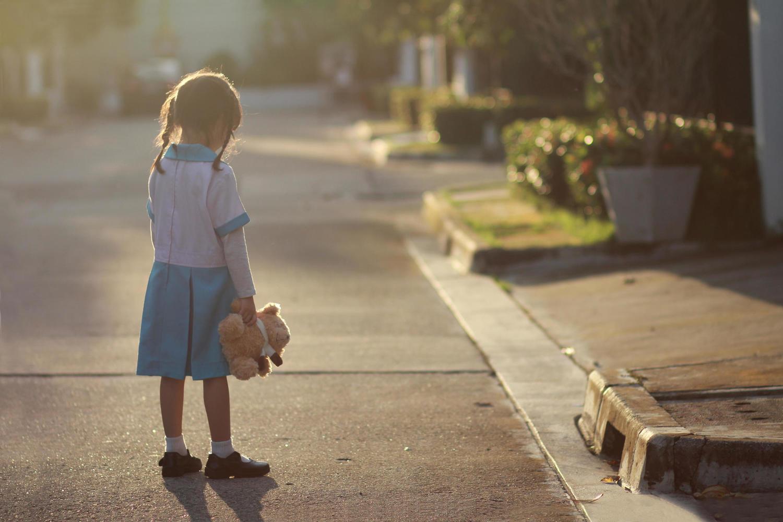 Семья 4-летней девочки, изнасилованной ешиботником, собирает деньги на продолжение борьбы