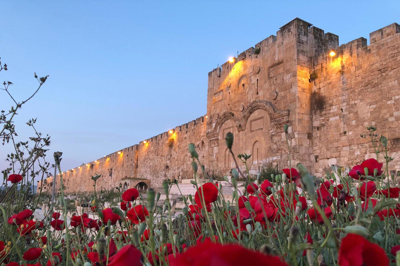 После катастрофы на Мероне День Иерусалима пройдет с ограничениями
