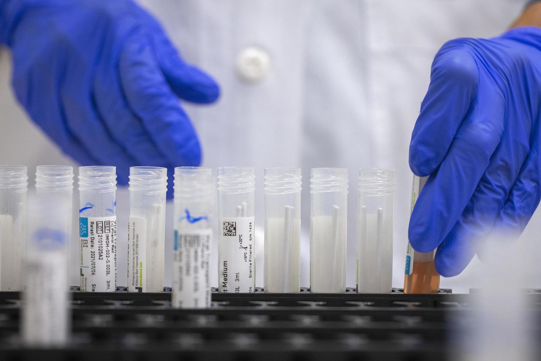 Исследование минздрава: 80% вакцинированных не заражают других