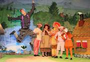 התיאטרון שלנו - הברווזון המכוער