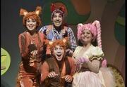 תיאטרון אורנה פורת - שועלון מחפש חברים
